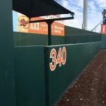 Left field at the Disch (Joe Cook/IT)