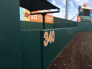 Left field at the Disch (Joe Cook/IT)